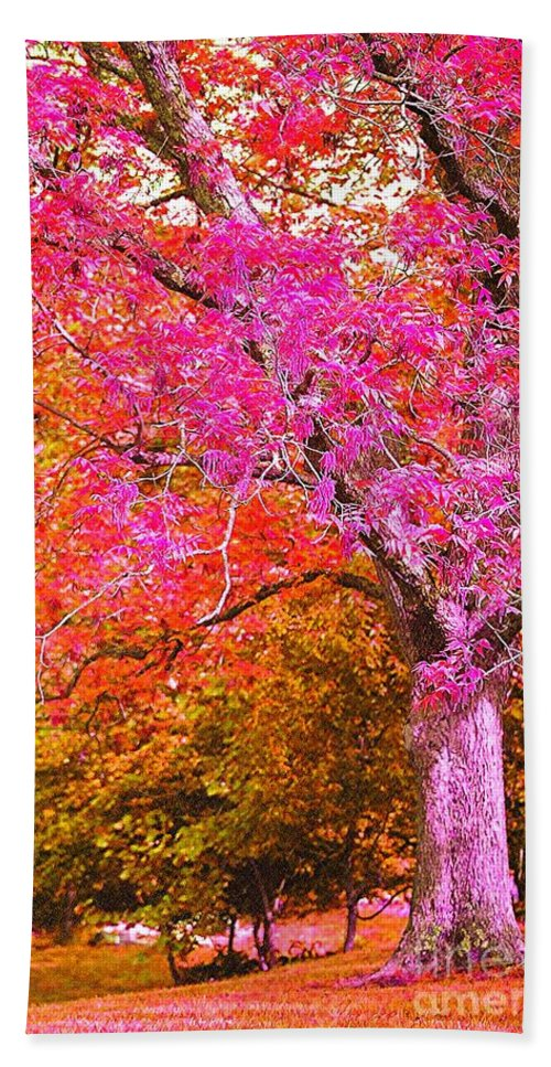 Fuschia Beach Towel featuring the photograph Fuschia Tree by Nadine Rippelmeyer