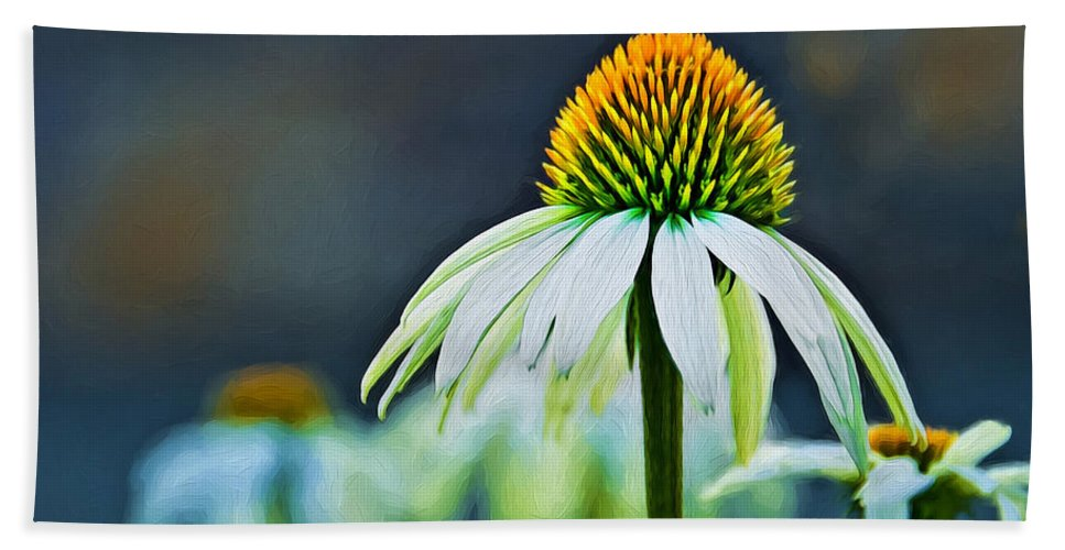 Gerbera Beach Towel featuring the photograph Bristle Flower by Maria Coulson