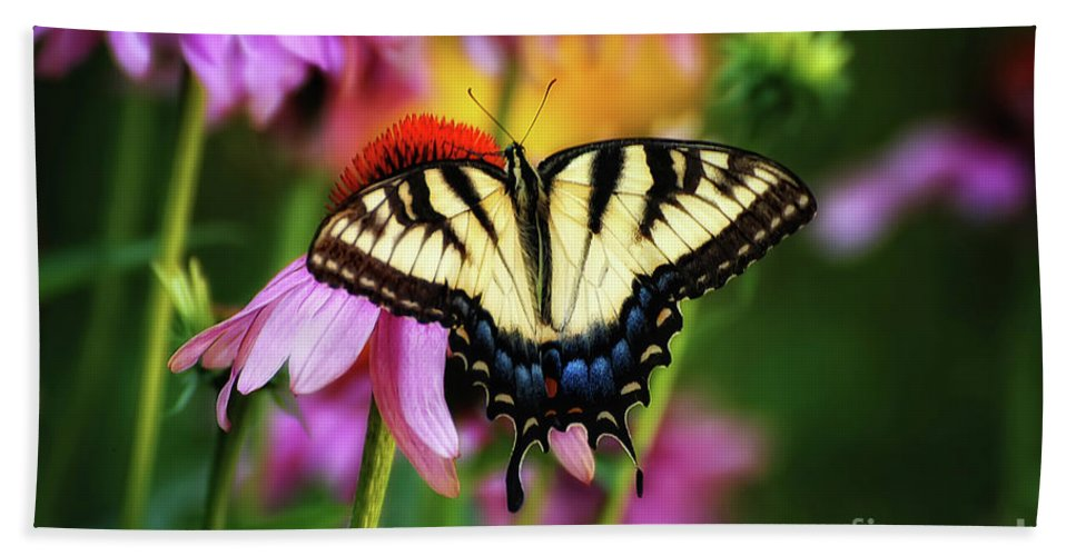 Butterfly Beach Towel featuring the photograph Garden Jewelry by Lois Bryan