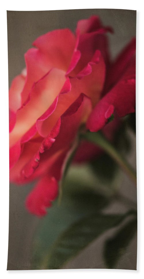 Flower Beach Towel featuring the photograph Garden Rose 8822 by Teresa Wilson