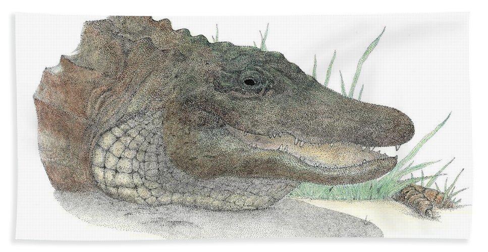 Gator Beach Towel featuring the drawing Gator by David Weaver