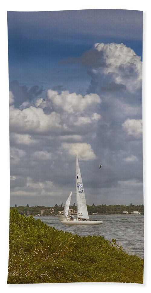 Florida Beach Towel featuring the photograph Gentle Breeze by Mark Fuge