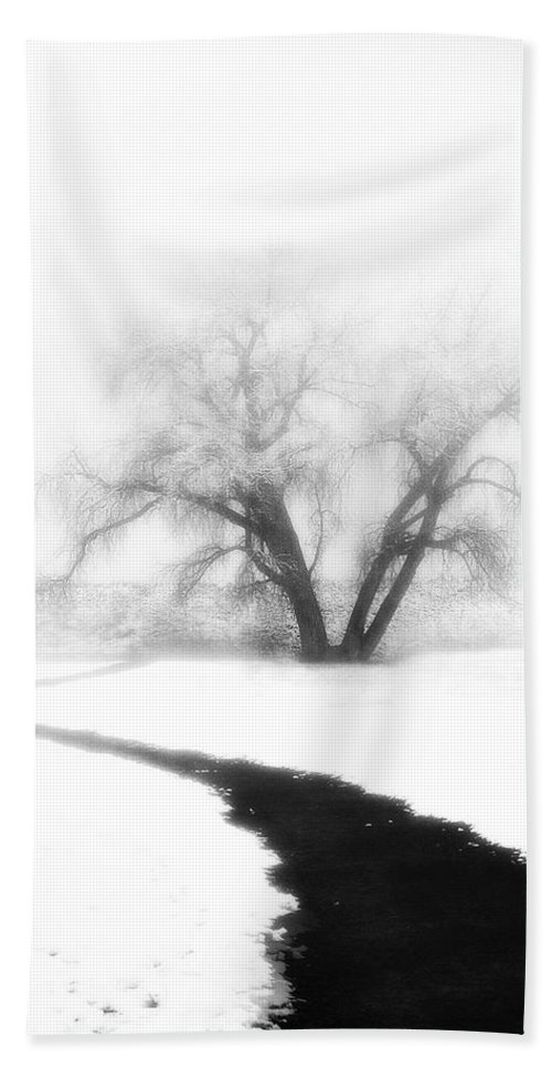 Tree Beach Sheet featuring the photograph Getting There by Marilyn Hunt