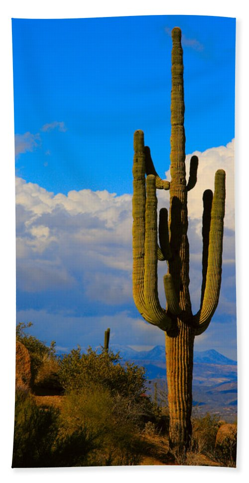 Saguaro Beach Towel featuring the photograph Giant Saguaro In The Southwest Desert by James BO Insogna
