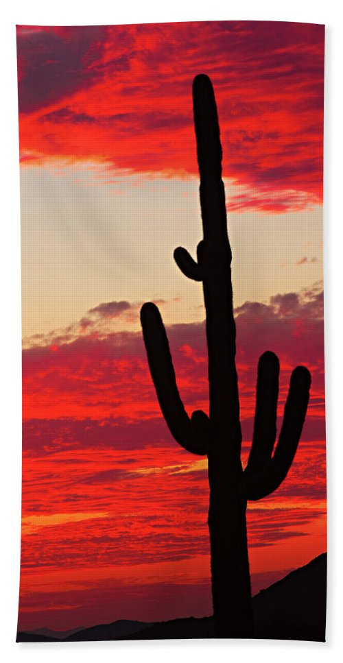 Sunset Beach Towel featuring the photograph Giant Saguaro Southwest Desert Sunset by James BO Insogna