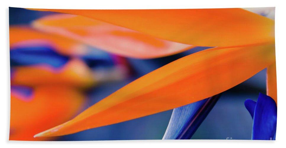 Bird Of Paradise Beach Sheet featuring the photograph Gods Garden by Sharon Mau