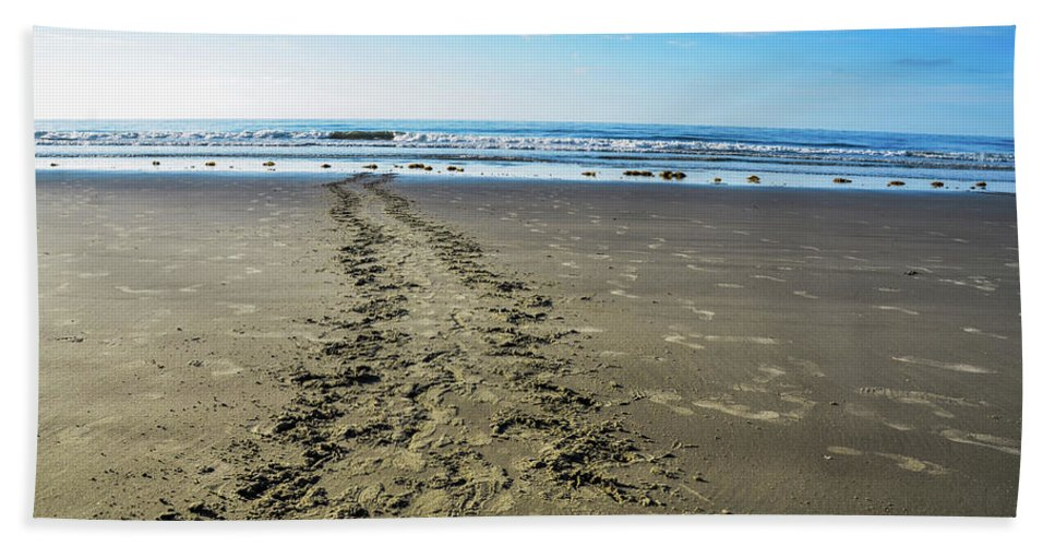 Sea Turtle Tracks Beach Towel featuring the photograph Going Back to the Ocean by Randy J Heath
