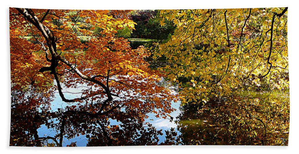 Autumn Beach Towel featuring the photograph Golden Autumn Trees by Susan Savad