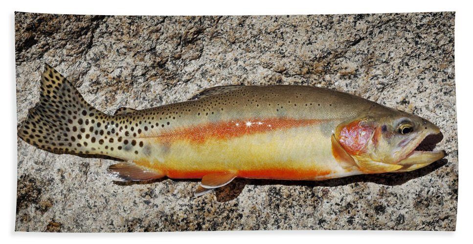 Golden Trout Beach Towel featuring the photograph Golden Beauty by Kelley King