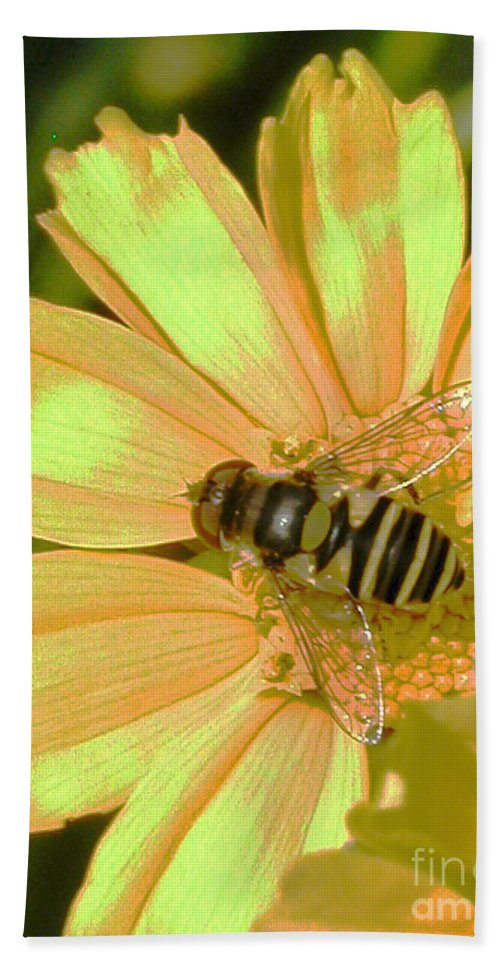 Bee Beach Towel featuring the photograph Golden Bee by Karol Livote