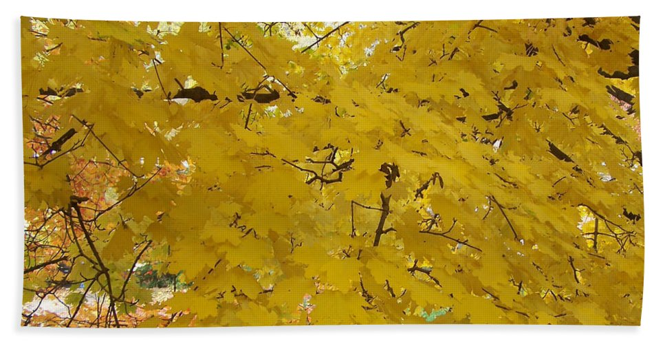 Fall Autum Trees Maple Yellow Beach Sheet featuring the photograph Golden Canopy by Karin Dawn Kelshall- Best