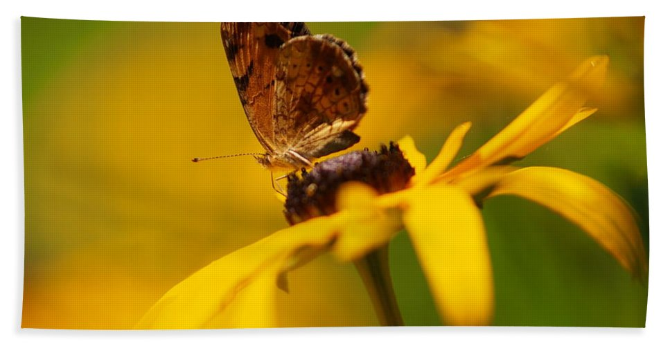Flowers Beach Towel featuring the photograph Golden Dreams Of A Summer Garden by Dorothy Lee