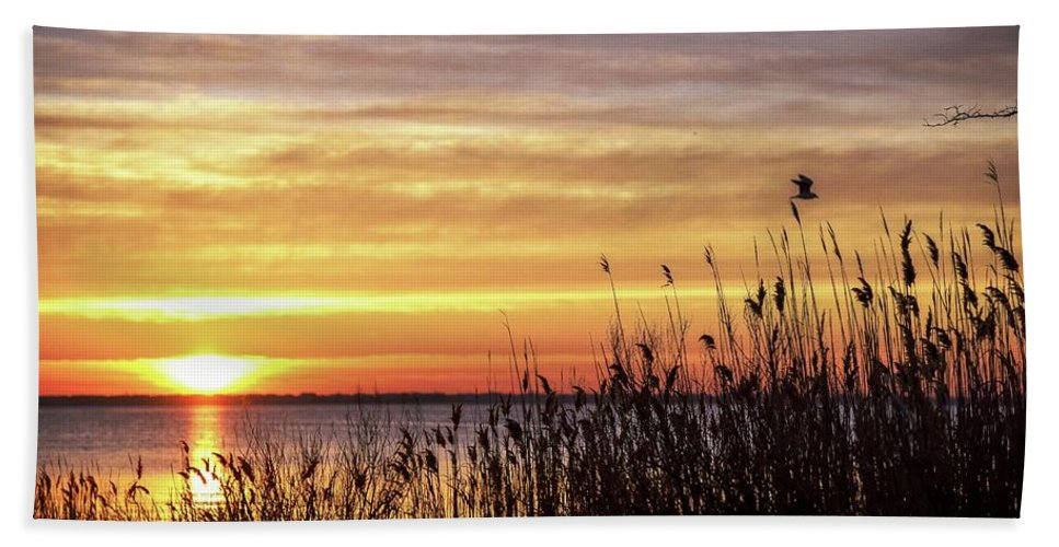 Sunrise Beach Towel featuring the photograph Golden Morning by Bob Cuthbert