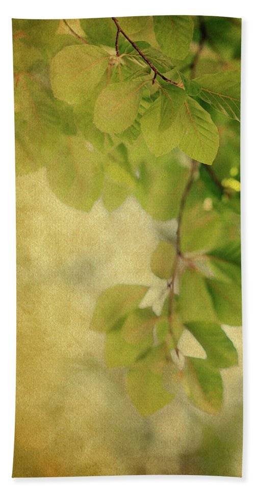 Leaves Beach Towel featuring the photograph Golden by Rebecca Cozart