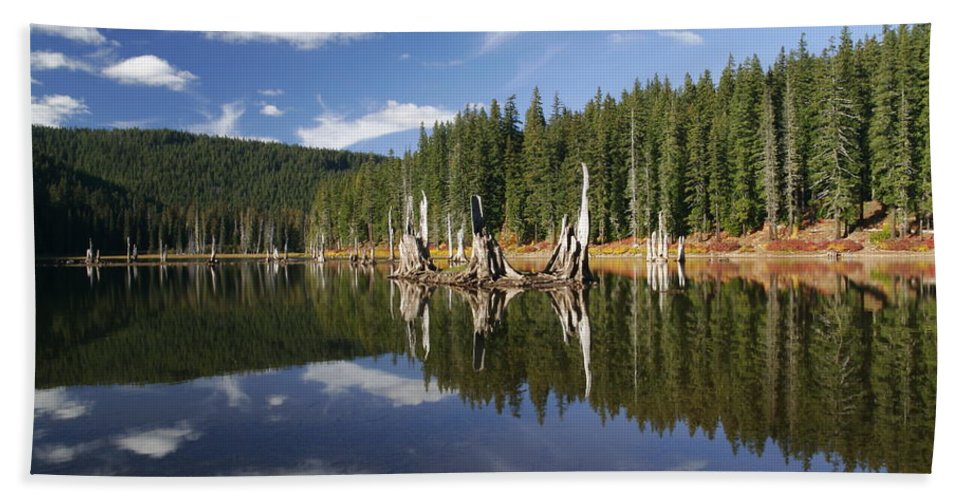 Goose Lake Beach Towel featuring the photograph Goose Lake by Wes and Dotty Weber