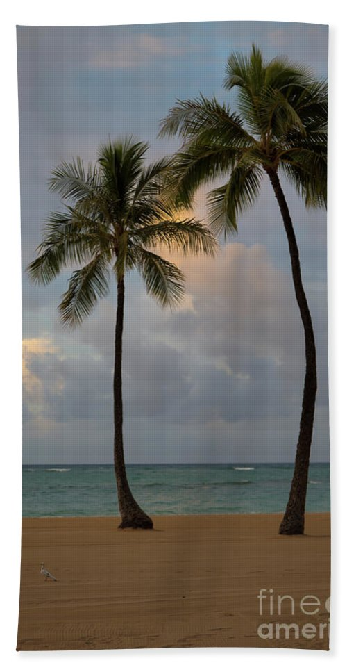 Oahu Beach Towel featuring the photograph Gossips by Jon Burch Photography