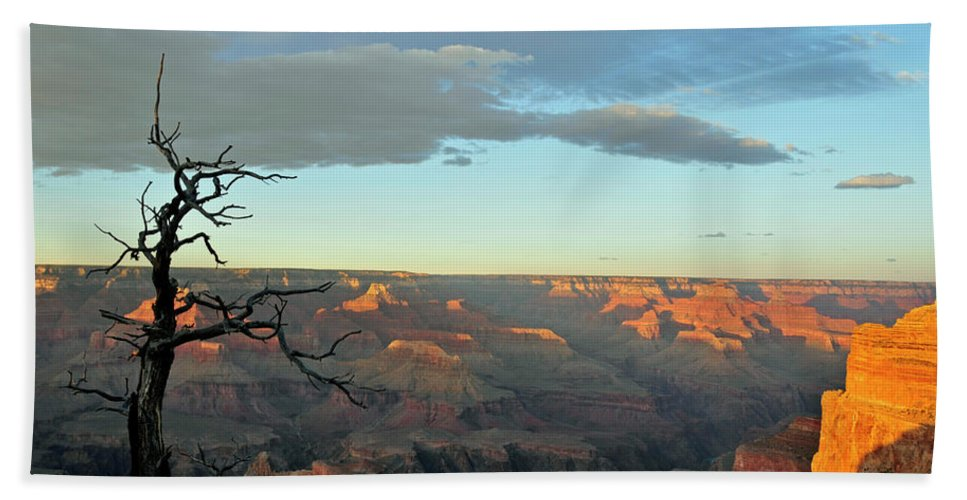 Grand Canyon Beach Towel featuring the photograph Grand Canyon 1 by David Arment