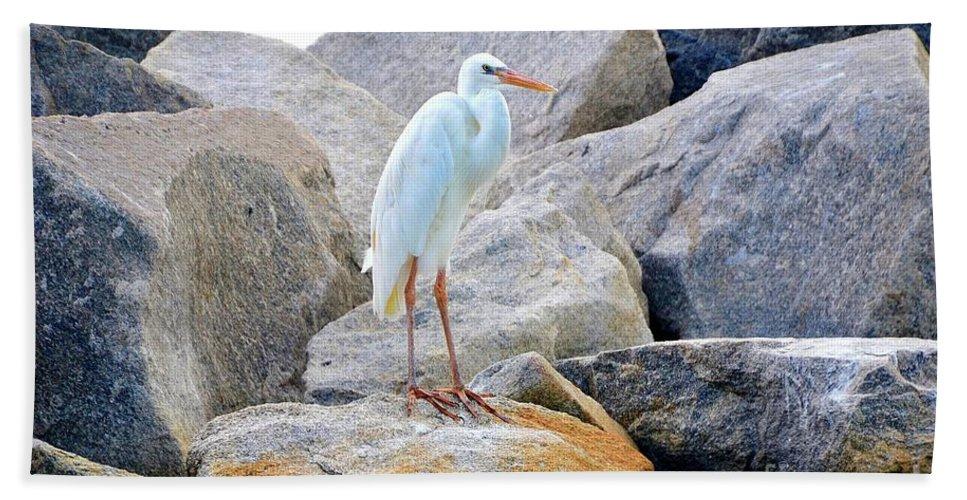 Sherri Hubby Beach Towel featuring the photograph Great White Heron Of Florida by Sherri Hubby