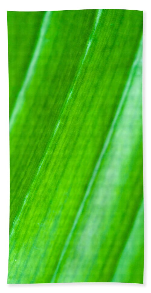 Abstract Beach Towel featuring the photograph Green Abyss by Sebastian Musial