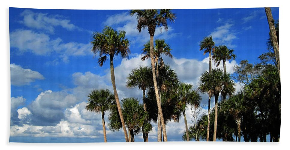 Photography Beach Towel featuring the photograph Group Of Palms by Susanne Van Hulst