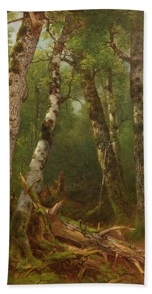 Woodland; Forest; Tree; Wood; Fallen; Birch; Romanticist; Romantic; Hudson River School; Bouleau; Bouleaux; Group Of Trees Beach Towel featuring the painting Group Of Trees by Asher Brown Durand