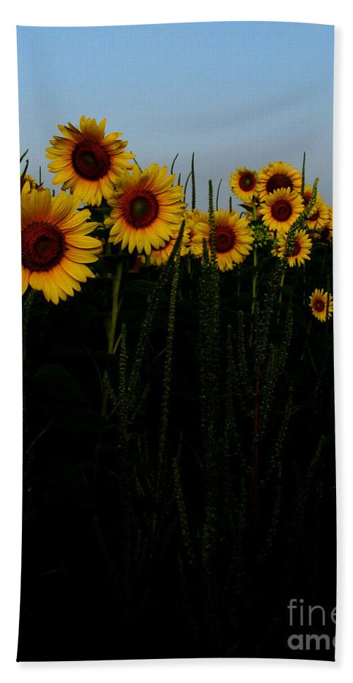 Sunflowers Beach Towel featuring the photograph Guide Me by Amanda Barcon