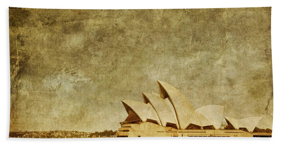 Sydney Beach Towel featuring the photograph Guided Tour by Andrew Paranavitana