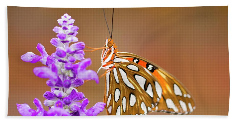 Butterfly Beach Towel featuring the photograph Gulf Fritillary by Shelley Neff