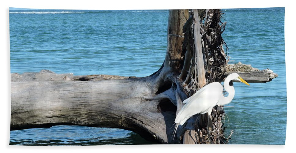Blue Beach Towel featuring the photograph Gulf Shallows by Beth Williams