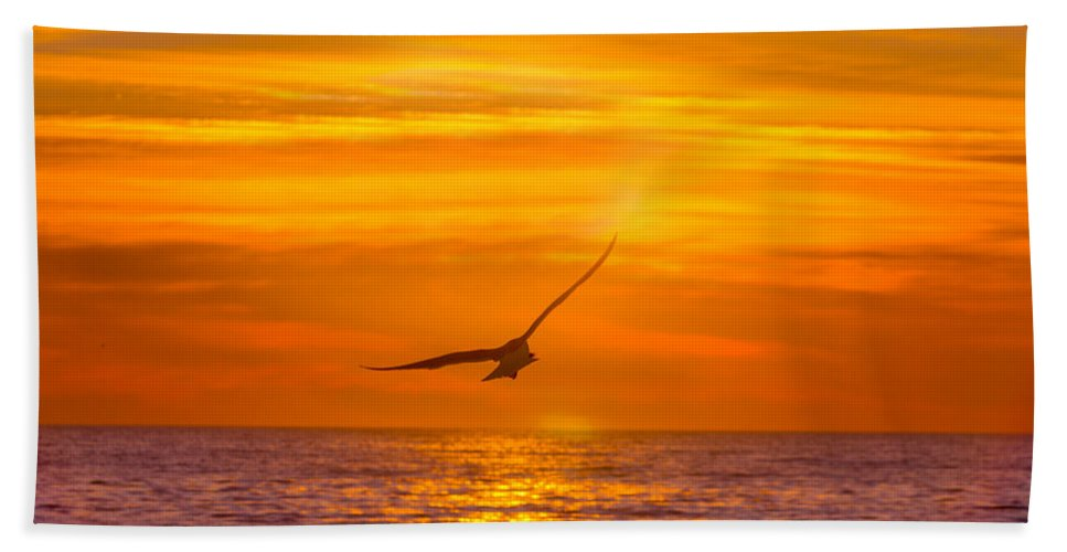 Atlantic Ocean Beach Towel featuring the photograph Gull At Sunrise by Allan Levin