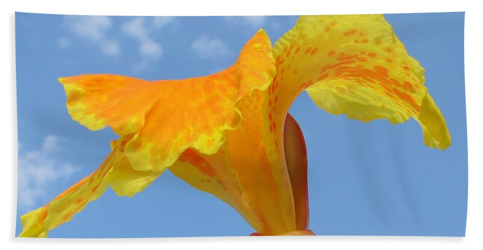 Beach Towel featuring the photograph Happy Canna by Luciana Seymour
