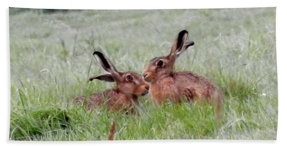 Hares. Field Beach Towel featuring the digital art Hare 2 Day by Lynne Iddon