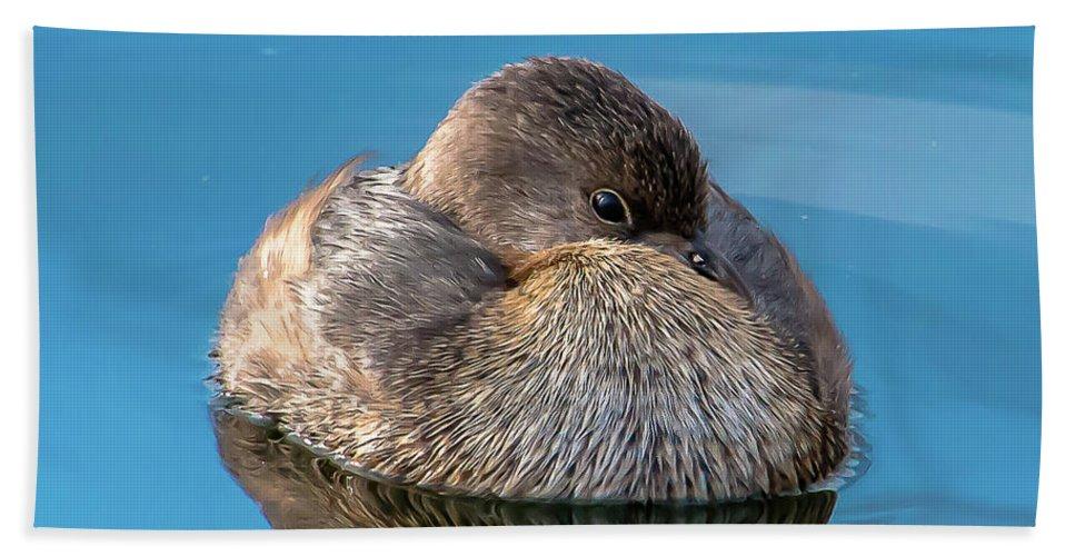Bird Beach Towel featuring the photograph Harmony by Kelly Lemen