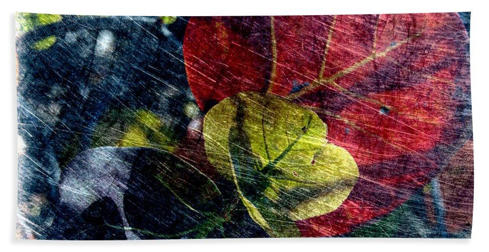 Harmony Beach Towel featuring the photograph Harmony by Susanne Van Hulst