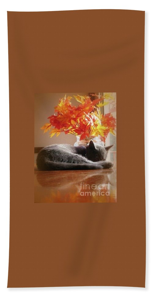 Restful Beach Towel featuring the photograph Have A Restful Thanksgiving by Jennifer E Doll