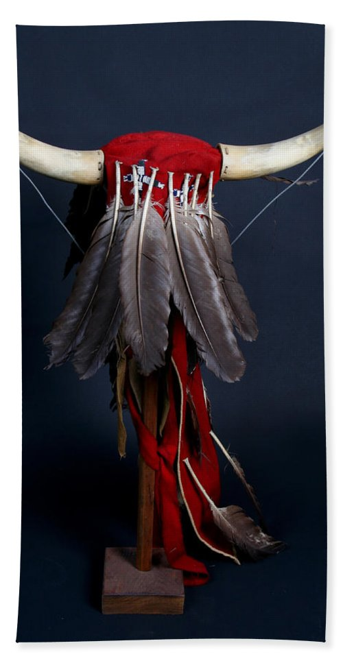 Headdress Beach Towel featuring the photograph Headdress by Joe Kozlowski