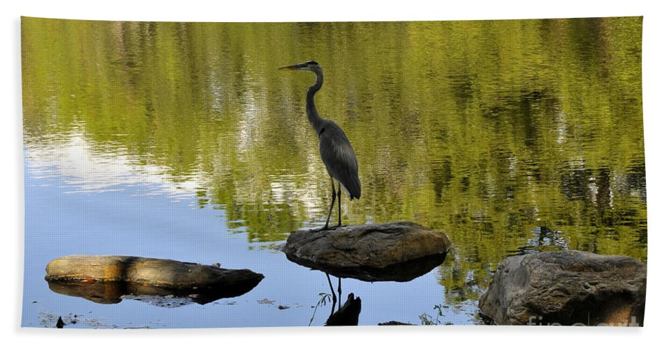Heron Beach Towel featuring the photograph Heron By The Lake by David Lee Thompson