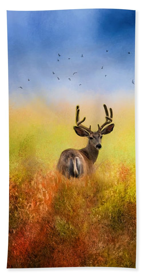 Deer Beach Towel featuring the photograph Hey Joe Where Did The Girls Go by Diane Schuster