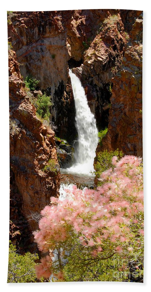 Water Fall Beach Towel featuring the photograph Hidden Falls by David Lee Thompson