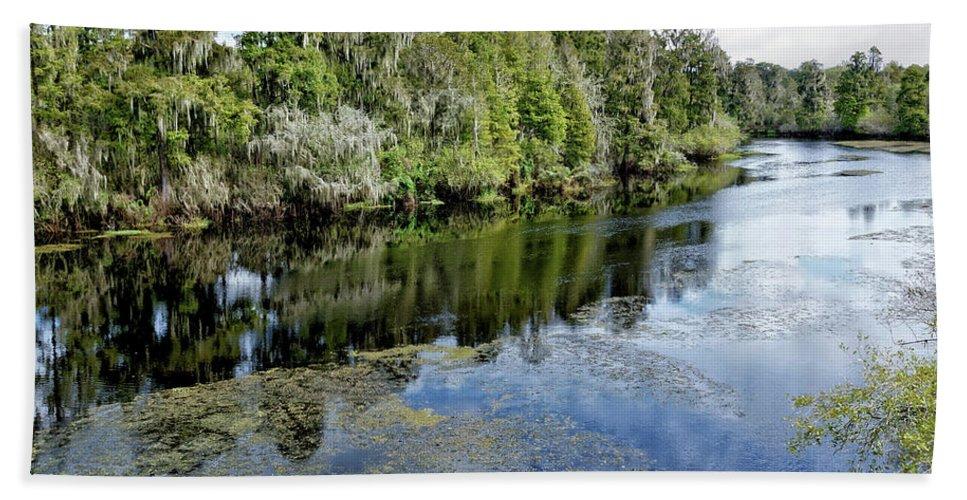 River Beach Towel featuring the photograph Hillsborough River 7 by John Trommer