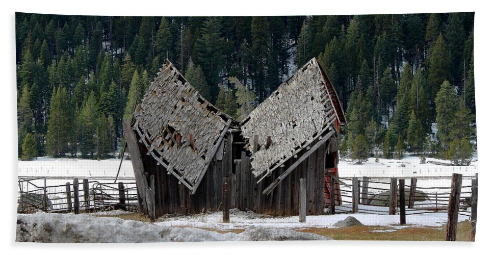 Open Barn Doors Beach Towel featuring the photograph His And Hers Barn 1 by Lydia Miller