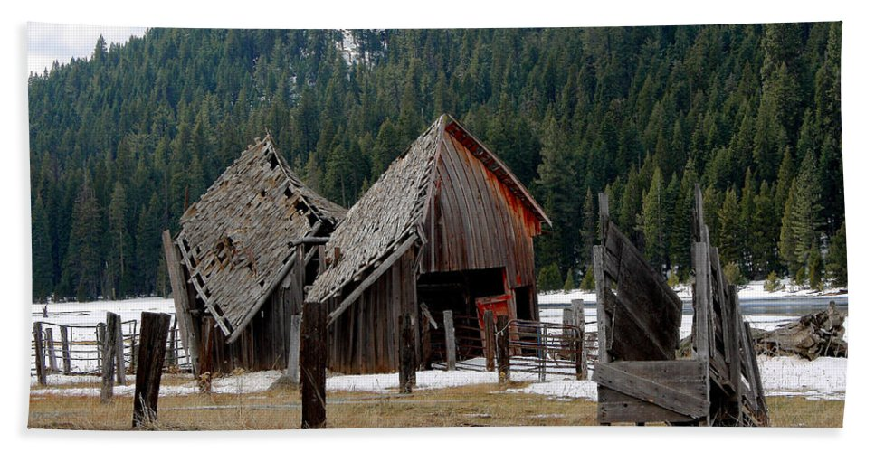 Open Barn Doors Beach Towel featuring the photograph His And Hers Barn 3 by Lydia Miller