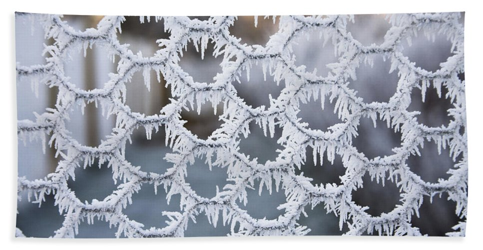 Hoar Frost Beach Towel featuring the photograph Hoar Frost by Diane Macdonald