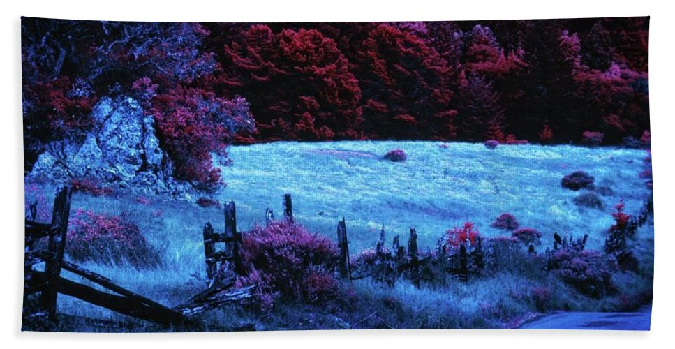 Nature Beach Towel featuring the photograph Homage To Michael by Camera Or Bust