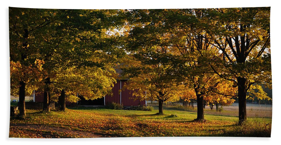Fall Beach Towel featuring the photograph Homecoming by Tim Nyberg
