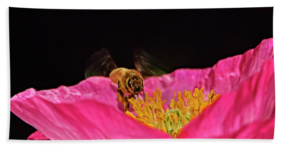 Insect Beach Towel featuring the photograph Honeybee In Flight 010 by George Bostian