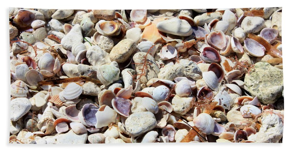 Shells Beach Towel featuring the photograph Honeymoon Island Shells by Carol Groenen