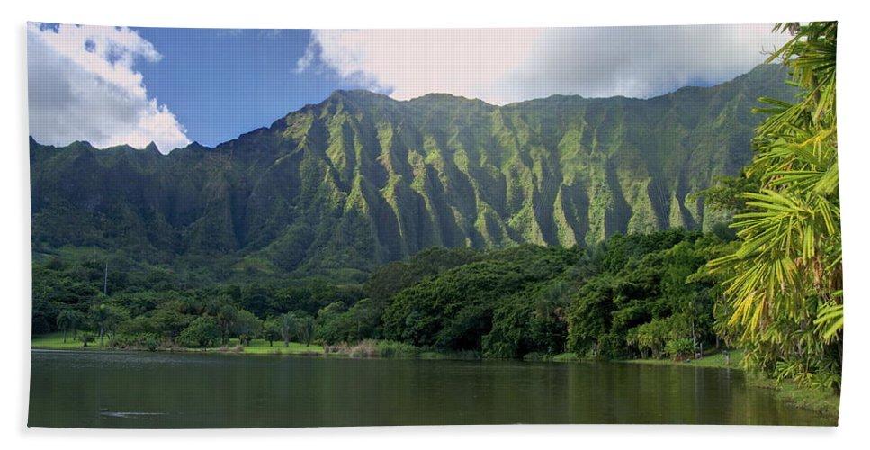 Hoomaluhia. Botanical Beach Towel featuring the photograph Hoolanluhia Botanical Garden by Michael Peychich