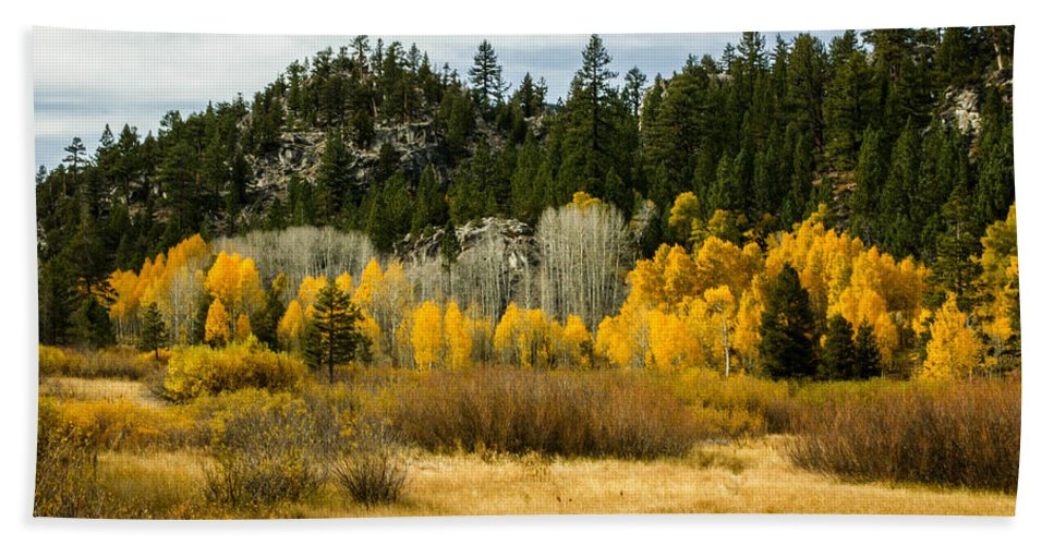 Fall Colors Beach Towel featuring the photograph Hope Valley by Misty Tienken