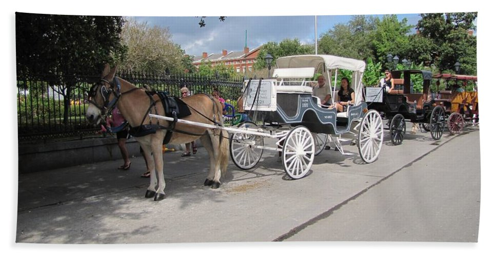 Buggy Rides Beach Towel featuring the photograph Horse And Buggy by Michelle Powell